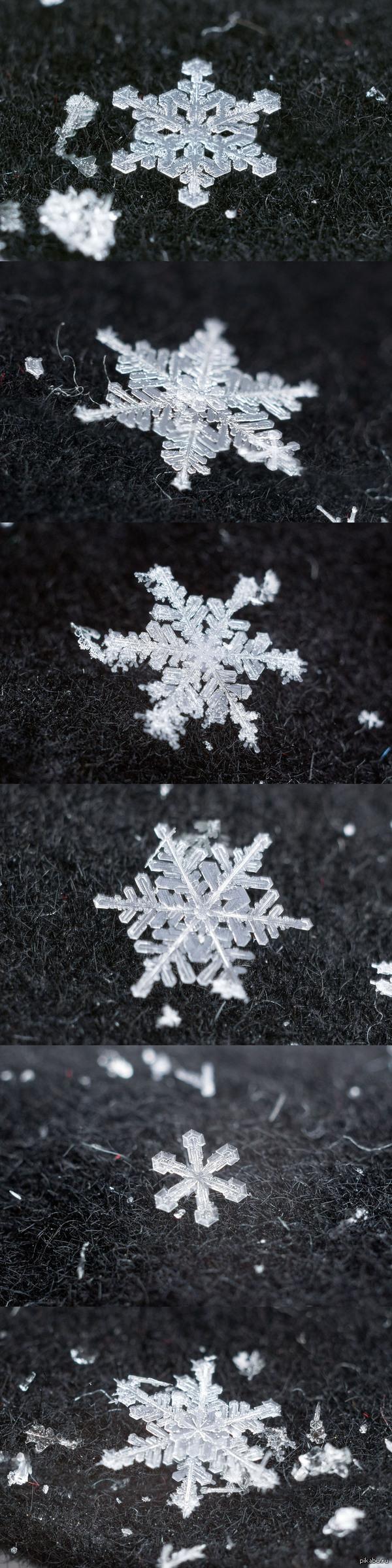 """Снежинки макро пятничное """"мое"""""""