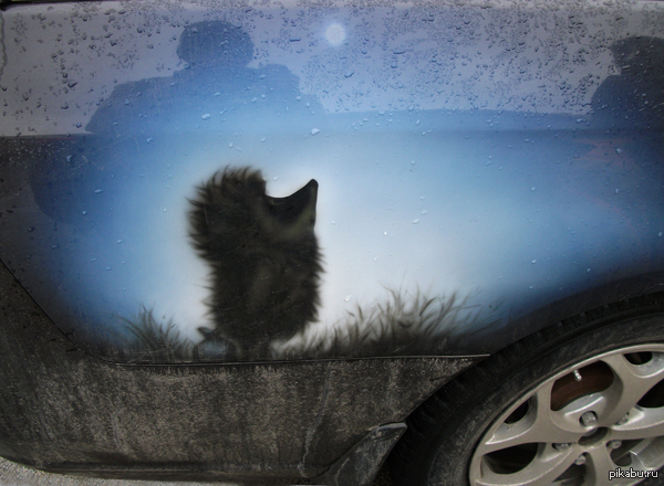Ёжик в тумане Красивый арт на машине.