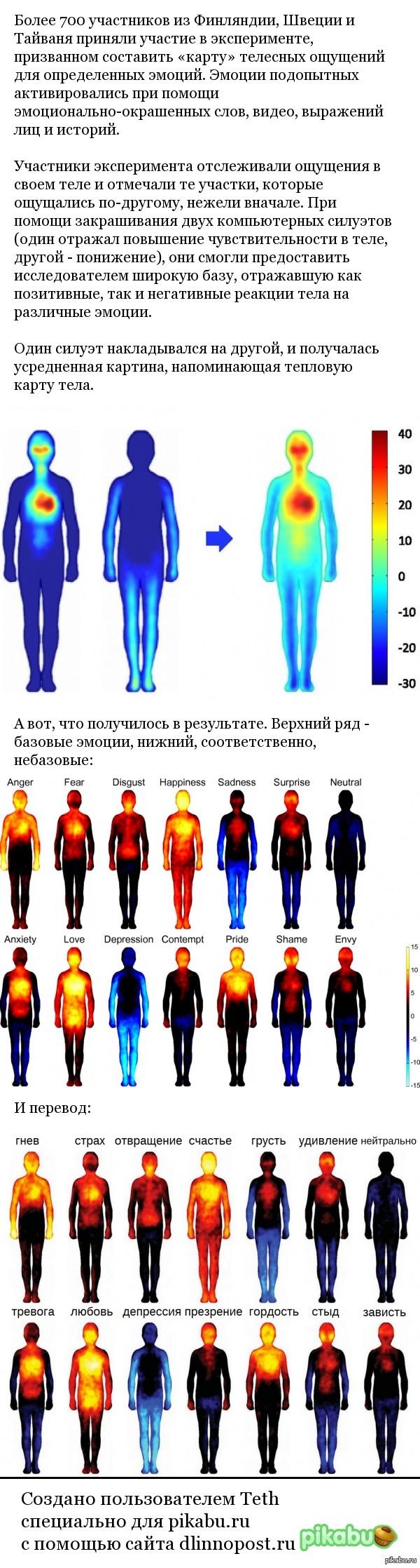 Телесная карта эмоций