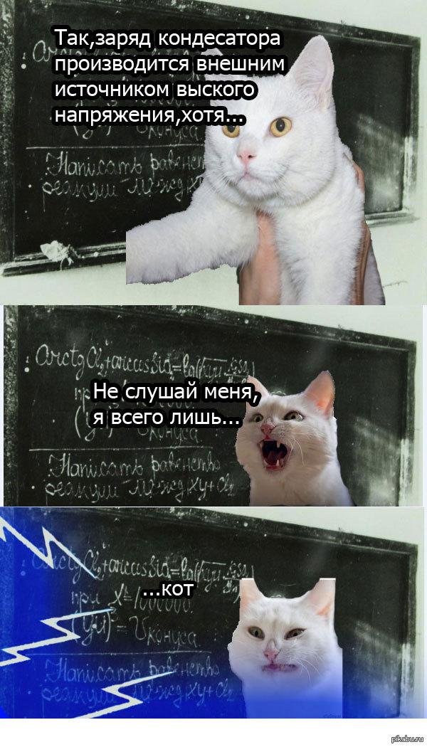 Первые ошибки кота Теслы