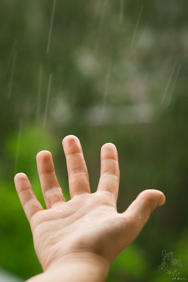 Дождь Рылась в летних фотографиях, нашла это. Август, долгожданный дождь после долгой жары...