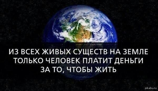 Человечность
