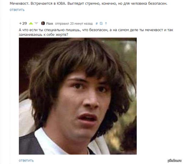 """Мечехвост <a href=""""http://pikabu.ru/story/yeto_zhivoe_sushchestvo_na_200_millionov_let_starshe_samyikh_drevnikh_dinozavrov_istinnoe_chudo_prirodyi_3126645#comment_42578674"""">#comment_42578674</a>"""