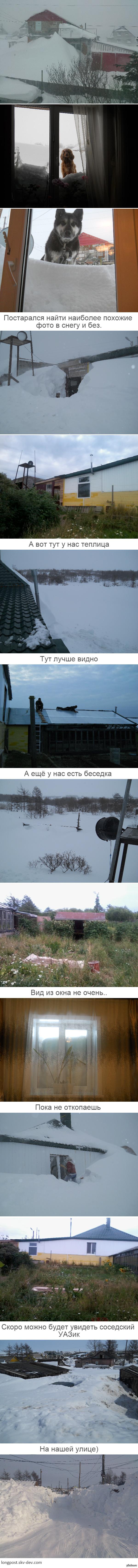 Заснеженности длиннопост. вот так нас засыпает снегом, а как у вас?
