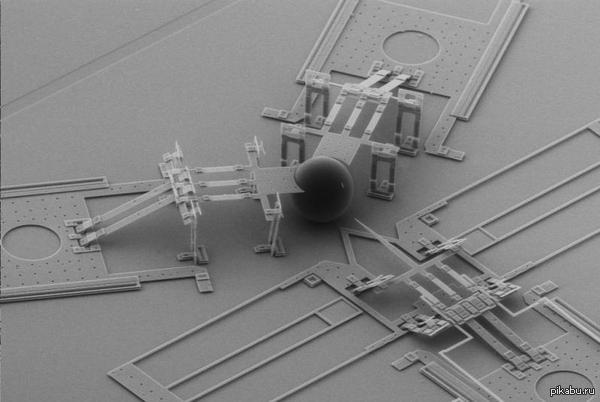 знакомьтесь, это микроинжектор для впрыскивания ДНК в зиготу в комментариях гифка и видео. Следующий пост - о том как делают трансгенных мышей