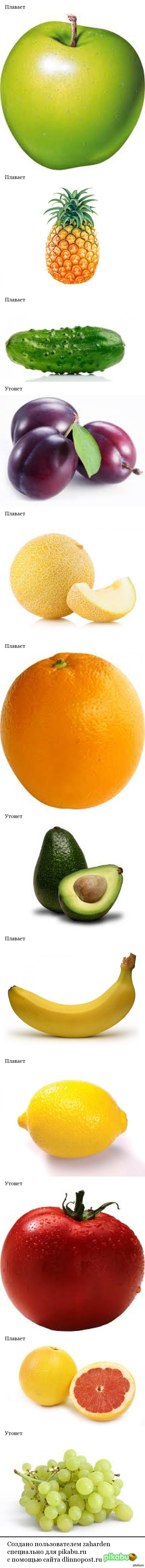 Плавает или утонет? Какие фрукты и овощи плавают и тонут в воде?