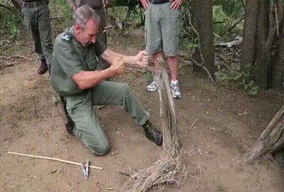 шаман за работой