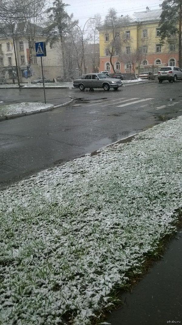 Ничего особенного просто снег выпал пятого мая. фотал на lumia 625