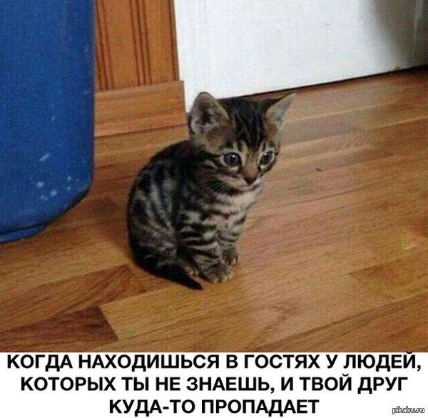 Со всеми бывало)