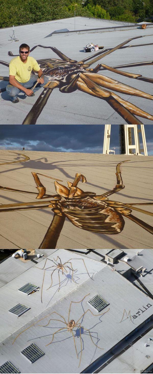 Гигантские пауки рисунки на крышах