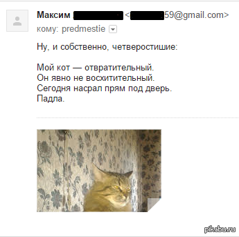 """Портрет кота и четверостишие, говорите?) В продолжение поста <a href=""""http://pikabu.ru/story/beznadezhnostt_3428329"""">http://pikabu.ru/story/_3428329</a>"""
