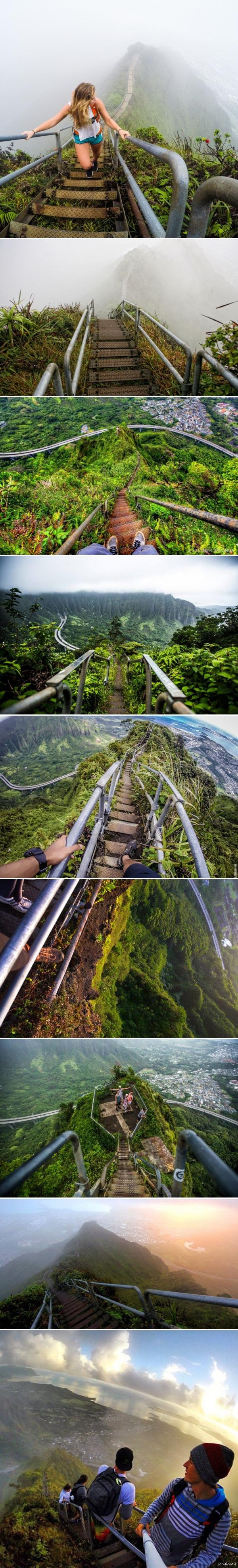 Лестница в небо Лестница Хайку (Haiku Stairs) или лестница в небеса - пешеходный маршрут проходящий по горной местности острова Оаху на Гавайях.