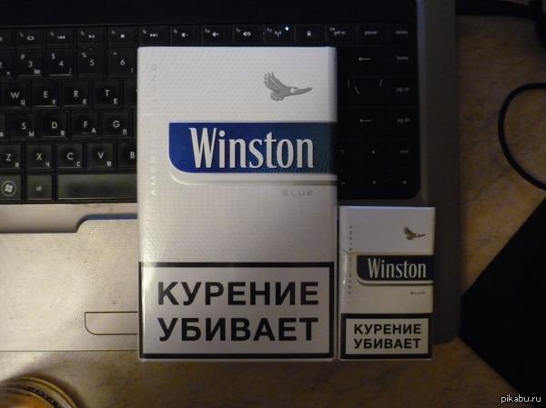 """Владыка курит """"дикие смолянистые""""  А какие куришь ты, щщщщенок?"""