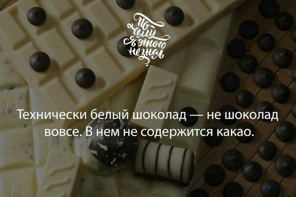 Белый шоколад не шоколад? Шоколад, Какао, ВКонтакте