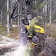 Автоматизация посадки деревьев Гифка, Gif анимация, Реверс, Reverse