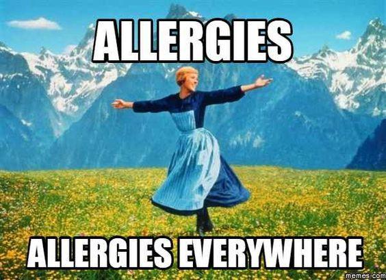Здравствуйте, меня зовут Таня и у меня поллиноз. Аллергия, Поллиноз, Лекарства, Длиннопост