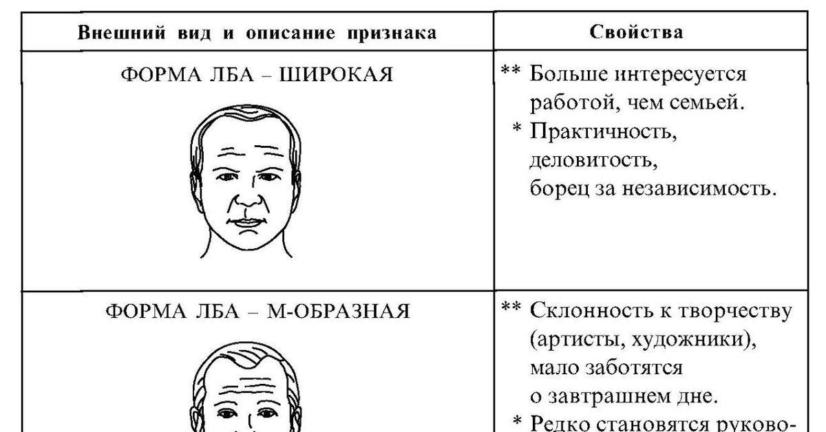 физиогномика лица в картинках обучение лоб всегда самостоятельно