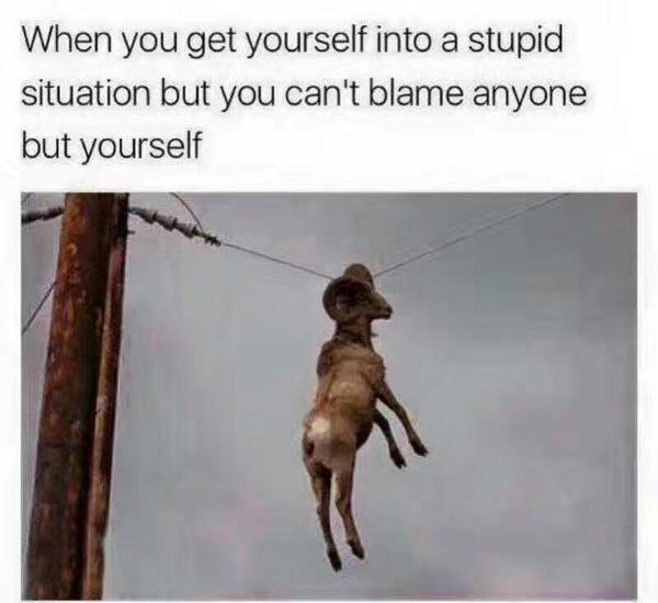 Когда попал в дурацкую ситуацию и тебе некого винить кроме самого себя