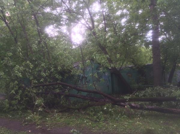 Апокалипсис у дома. Ураган в Москве Ураган в Москве, Ураган, Длиннопост