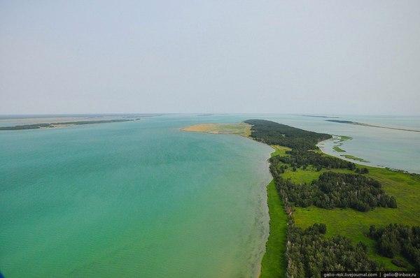 Самое большое озеро Западной Сибири – озеро Чаны. Чаны, Озеро, Сибирь, путешествие по России, длиннопост