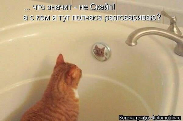Немного попутала]))