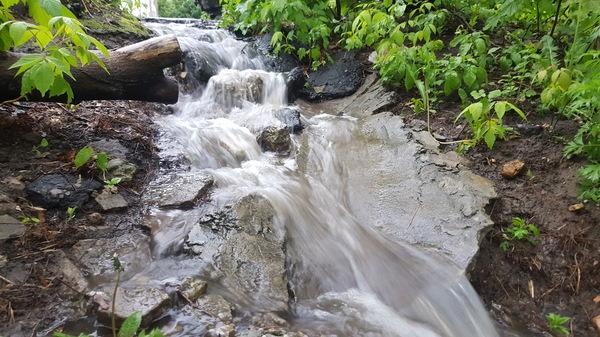 Сток воды в ливнёвку обычном городском дворе Дождь, сток, водопад, моё