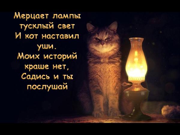 Кот с лампой