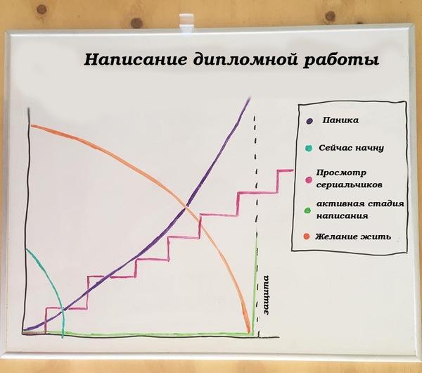 Написание дипломной работы Написание дипломной работы диплом юмор учеба график