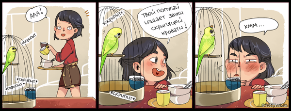 Попугаи...