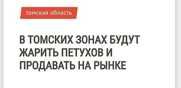 Искусство заголовка. Зона, Петух, Томск, Жарить