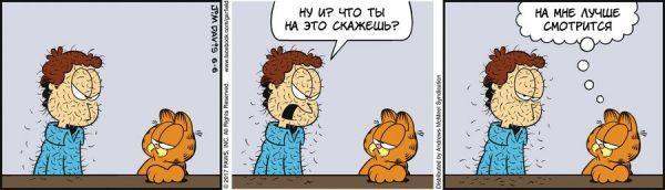 Перевод Гарфилда, 06 июня 2017г. Комиксы, Гарфилд, перевод, кот, шерсть, юмор, сарказм