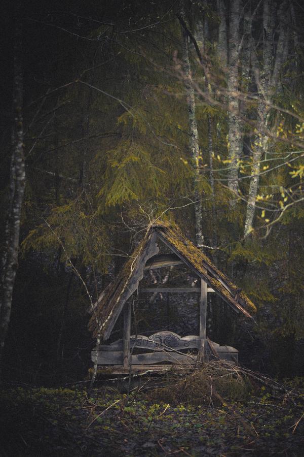 Тверская область фотограф, природа России, природа, Фото природы, Озеро, длиннопост