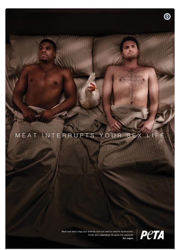 Сексуальный подтекст в рекламе зоозащитников смутил пользователей сети веганы, секс, Lentaru, бред, Белый парень трахнул черного, длиннопост
