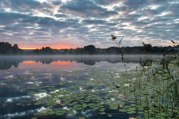 Смоленская область Озеро, Смоленская область, Россия, фотография, Природа, пейзаж, надо съездить, лето, длиннопост