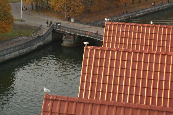 Просто красиво. Калининград и область. красота, Калининград, Светлогорск, автопробег, Балтийское море, достопримечательности, октябрь, моё, длиннопост