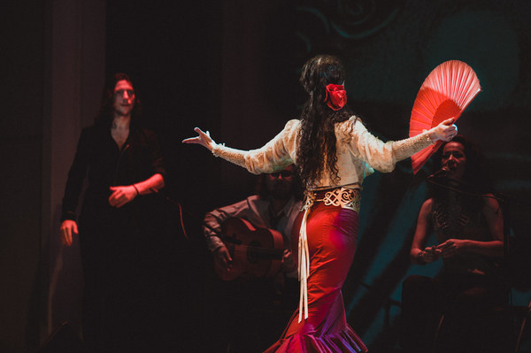 Танцы репортаж, фотография, танцы, танго, бальные танцы, длиннопост