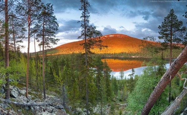 Колвицкие тундры Мурманская область, Колвицкие тундры, Россия, фотография, Природа, пейзаж, лето, надо съездить