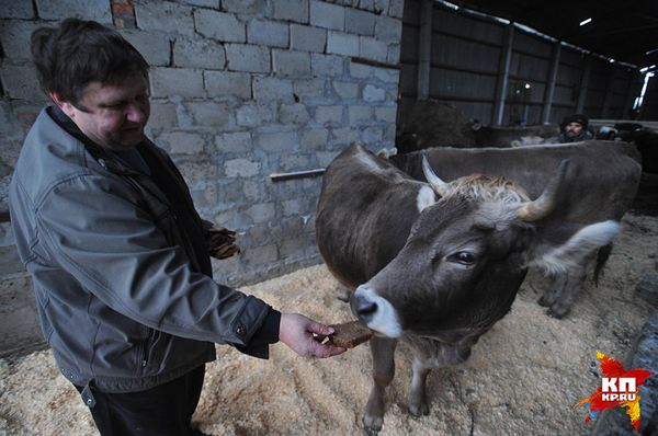 Две девки зажали фермера фото 112-15