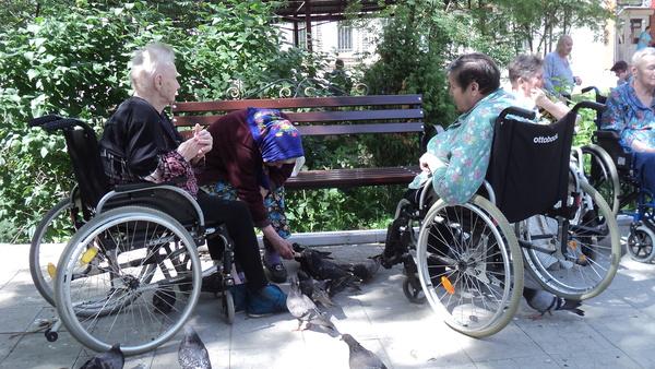 Бабушки кормят голубей Дом престарелых, Рязанская область, Тверская область