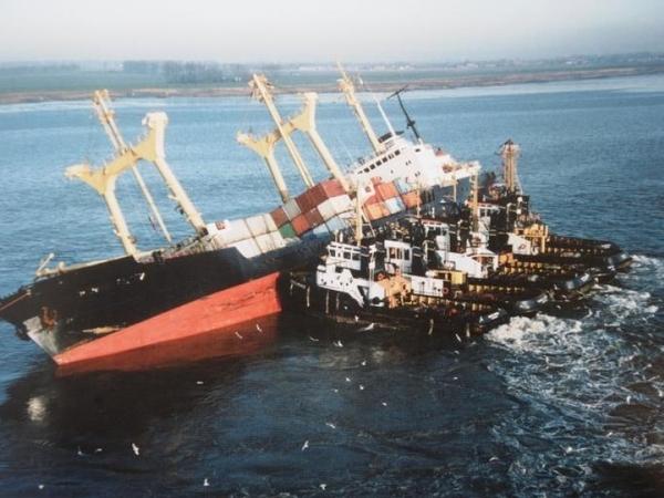 Третий день гуляет это фото, под названием: «Кормление грудных корабликов в дикой природе» Корабль, история, Спасение