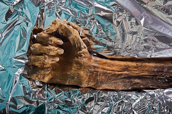 """Тайны """"ледяного человека"""" история, древние люди, Археология, Мумия, длиннопост"""