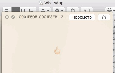 Когда решил посмотреть внутренности WhatsApp