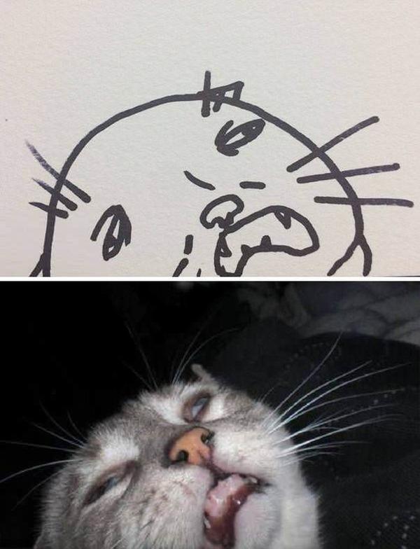 Коты с нарисованными улыбками