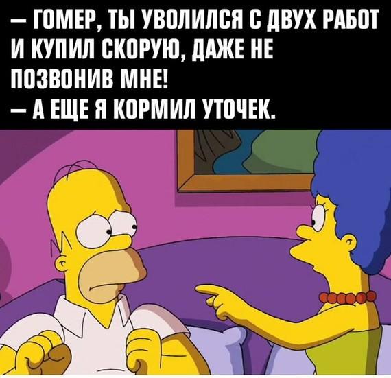 Философия Гомера D'oh симпсоны, Философия, Гомер Симпсон, длиннопост