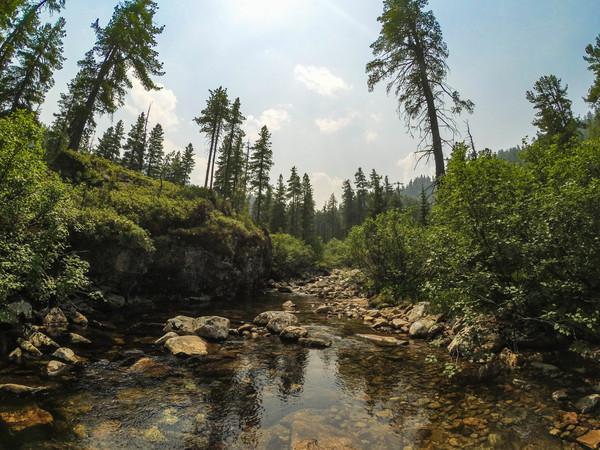 Хамар-Дабан. Байкал, горы, Дикая природа, природа России, длиннопост
