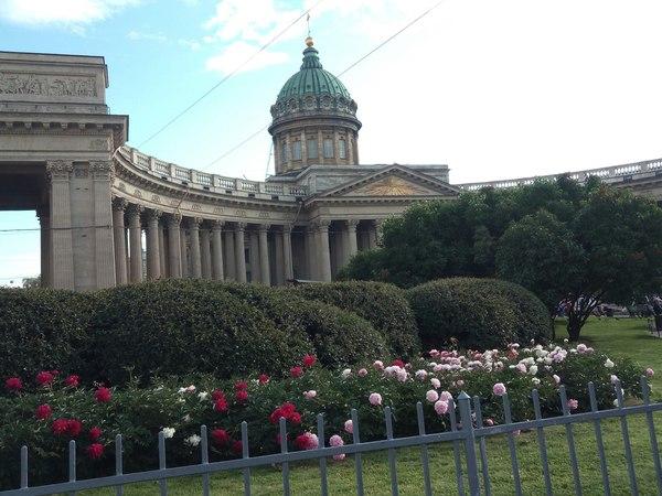 Как в Санкт-Петербург я переехал. Ч-2 моё, Санкт-Петербург, Переезд, длиннопост