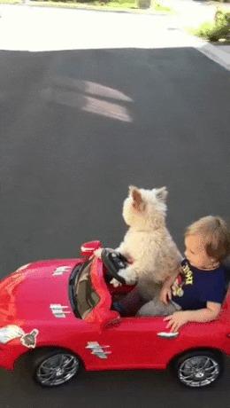 С опытным инструктором легче постигать азы вождения