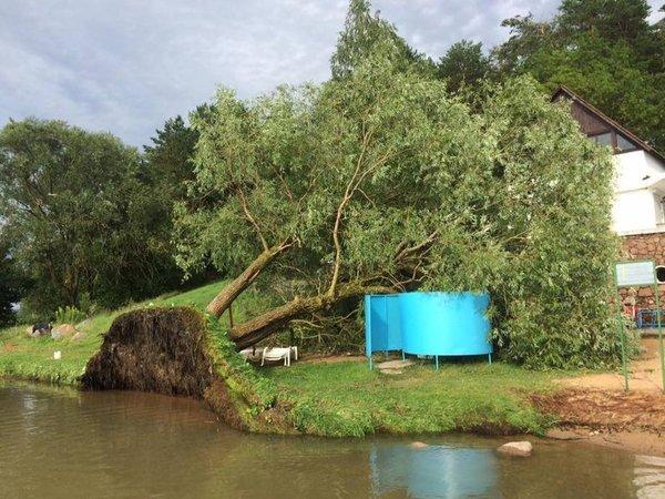 Последствия вчерашнего урагана на озере Нарочь (Беларусь).