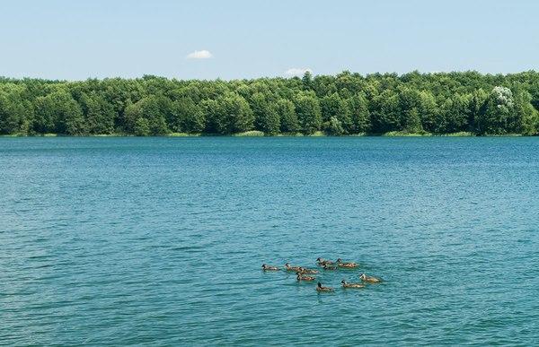 Семья на озере