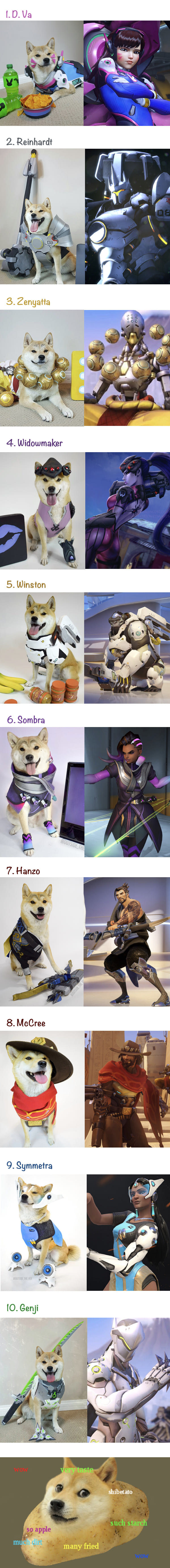 Косплей собаки на персонажей overwatch Собака, Косплей, overwatch, длиннопост, милота